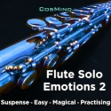 Flute Solo Emotions 2