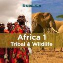Africa 1 - Tribal & Wildlife