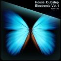 House Dubstep Electronic Vol. 1