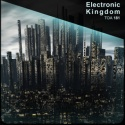 Electronic Kingdom