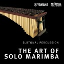 The Art Of Solo Marimba